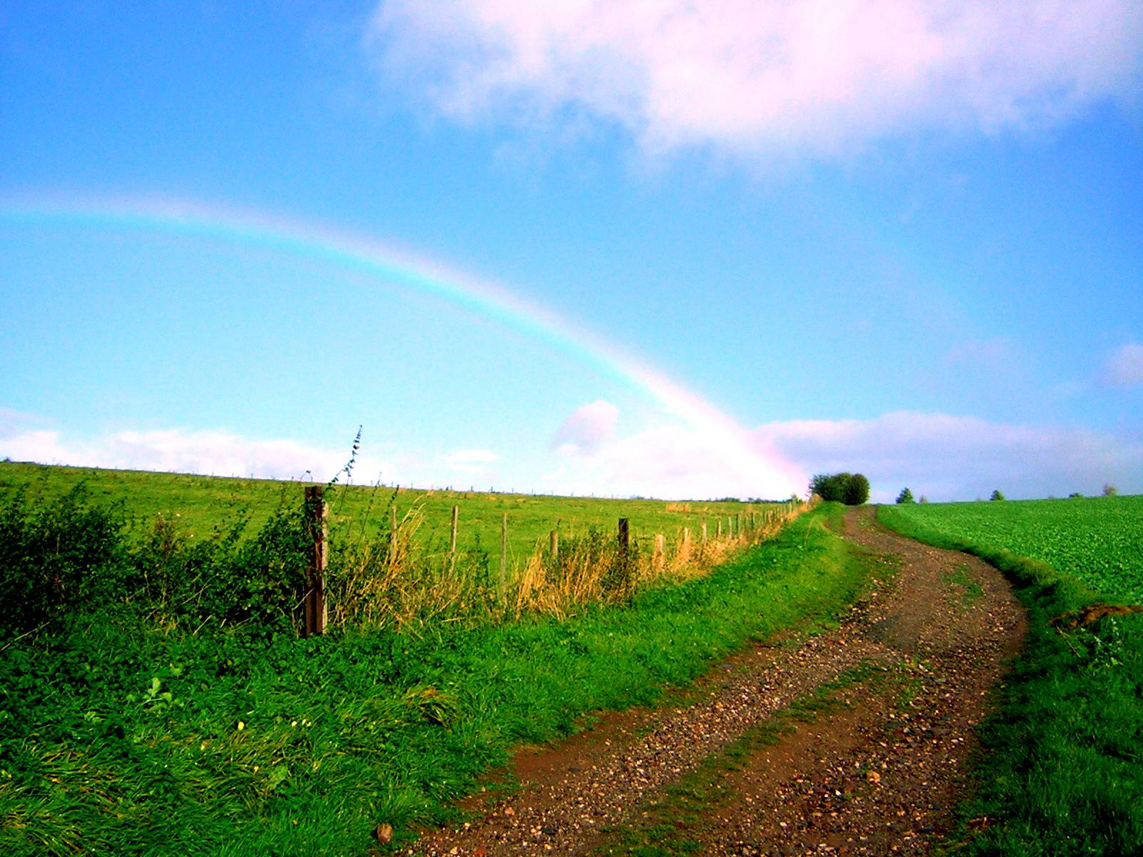Landscape_with_rainbow_on_the_road_between_Heimbach_and_Nideggen