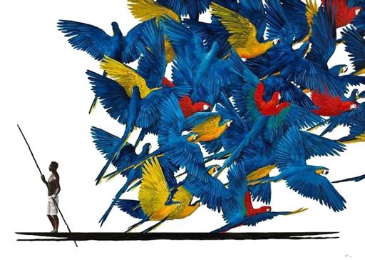 baraka feldenkrais expandiendo las alas