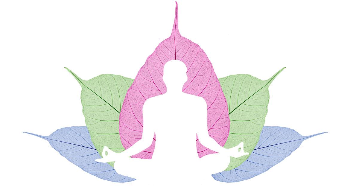 Baraka Mindfulness & Yoga