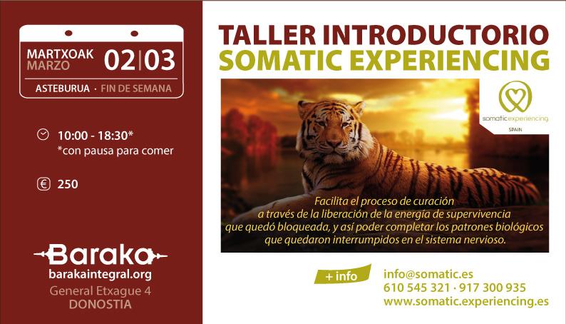 Taller introductorio de Somatic Experiencing