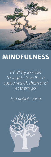 "Baraka Mindfulness ""Don´t try to expel thoughts. Give them space, watch them and tel them go"""
