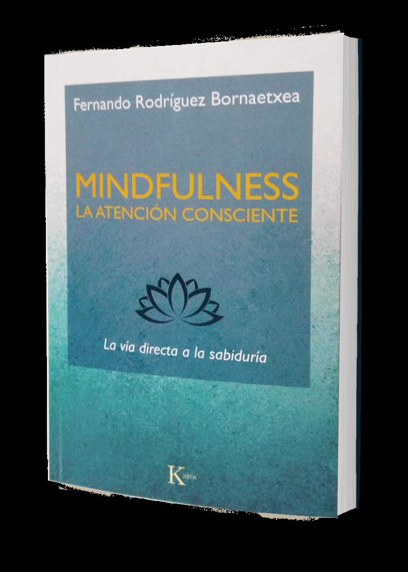 Libro Fernando Rodríguez Bornaetxea
