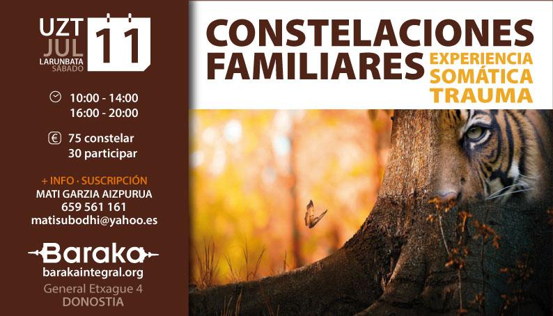 CONSTELACIONES FAMILIARES & SOMATIC EXPERIENCING