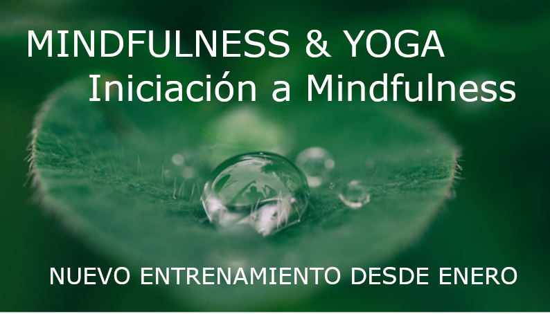 entrenamiento mindfulness y yoga