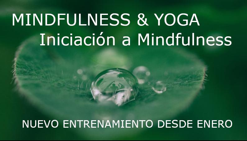 Mindfulness & Yoga: iniciación a Mindfulness