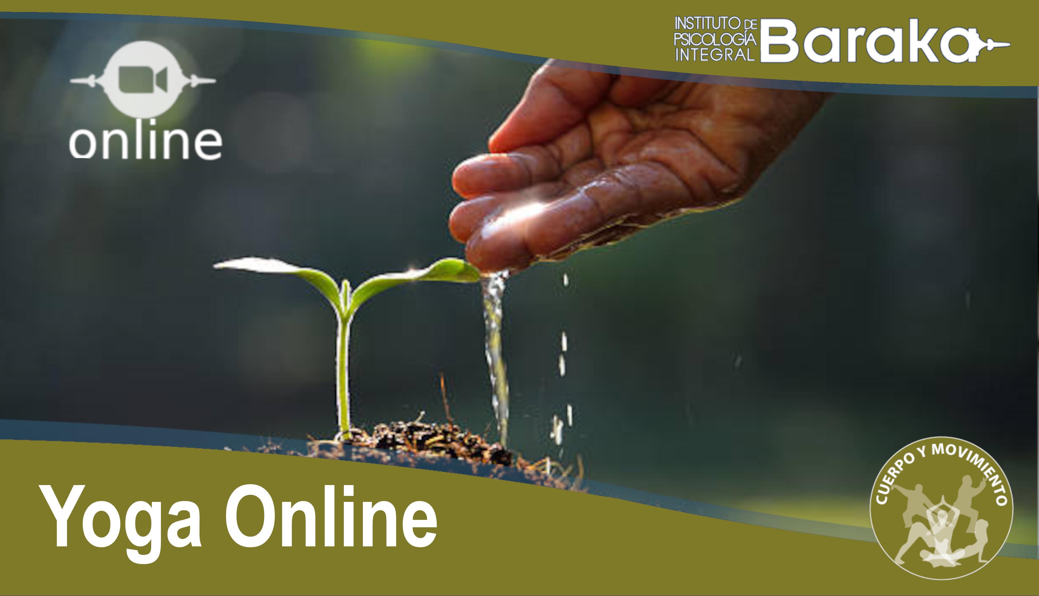 yoga online baraka