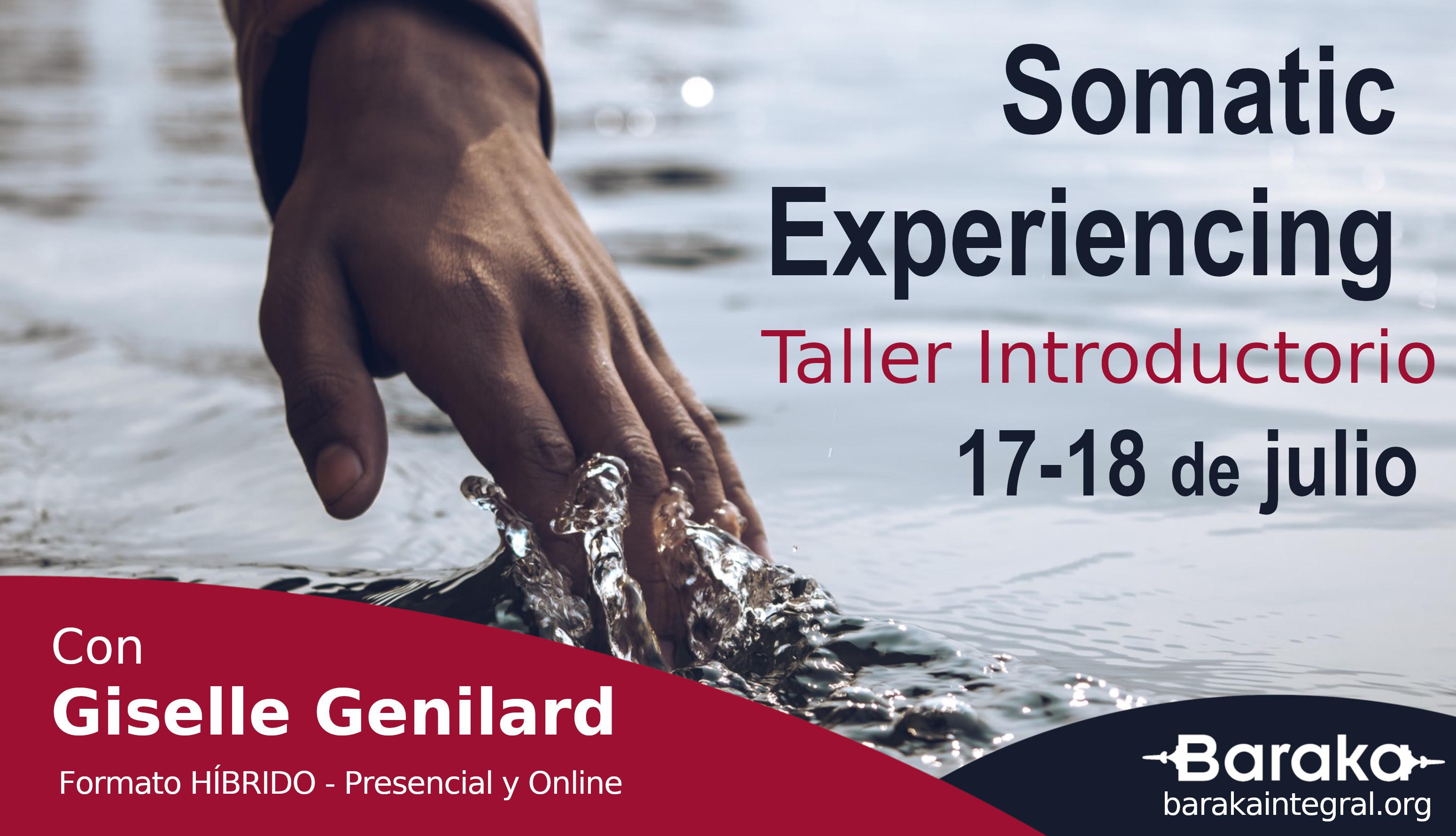 Taller introductorio Somatic Experiencing julio 2021